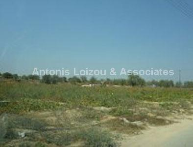 Land in Larnaca (Anafotida) for sale