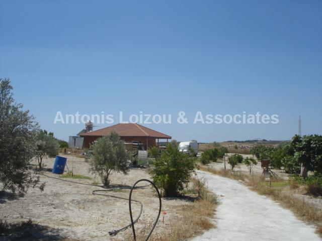 Detached Bungalo in Larnaca (Aradippou) for sale
