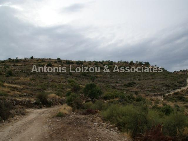 Land in Limassol (Pachna) for sale