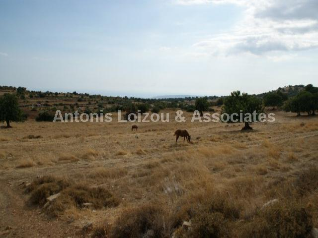 Field in Limassol (Pachna) for sale