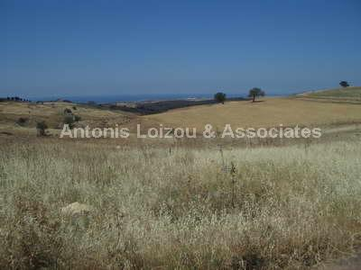 Field in Paphos (Souskiou) for sale